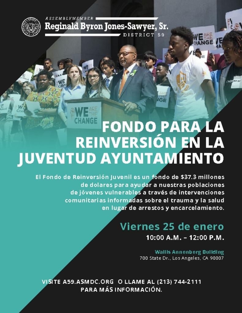 Youth Reinvestment Fund Town Hall