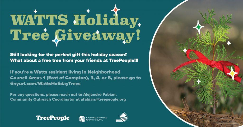 Watts Holiday Tree Giveaway
