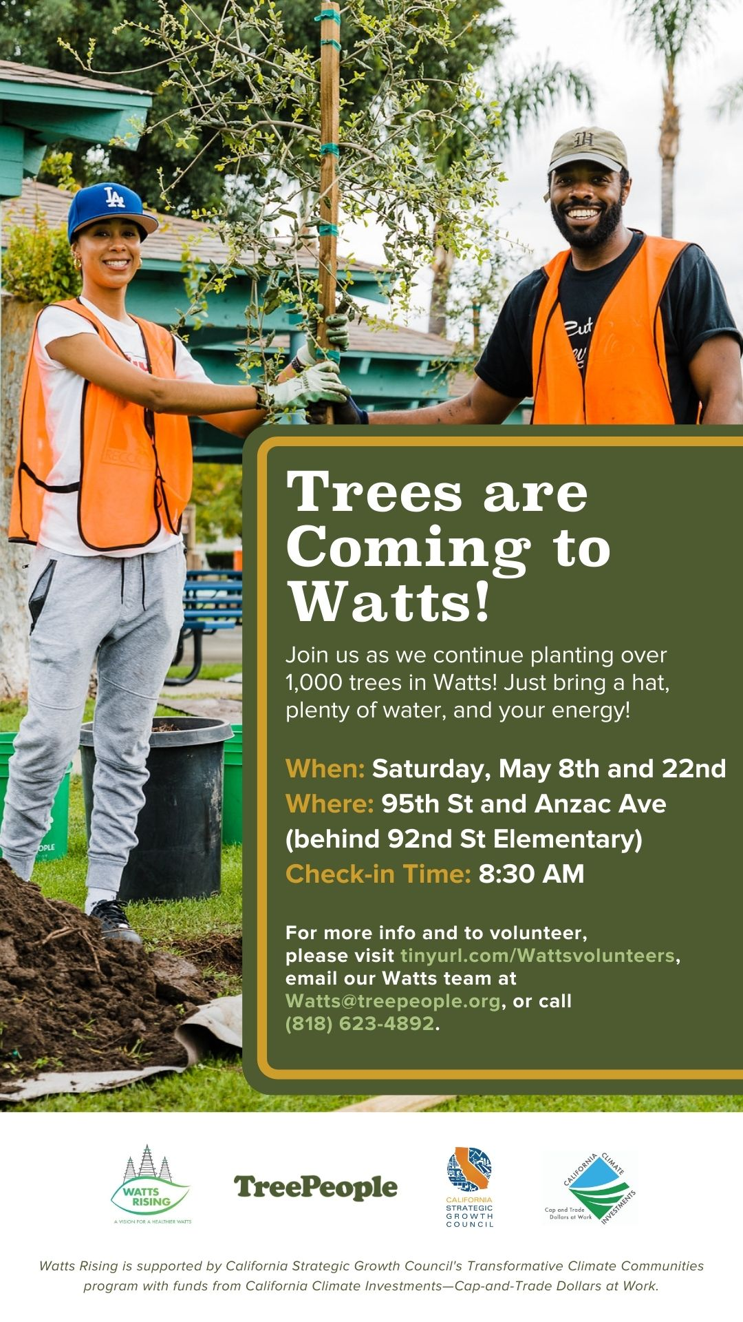 Watts tree planting